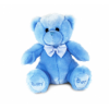 Small Blue Teddy (Approx 20cm)