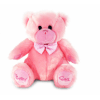 Small Pink Teddy (Approx 20cm)